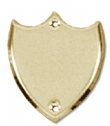 S006G Side Shield Gold (Raised) BLANK